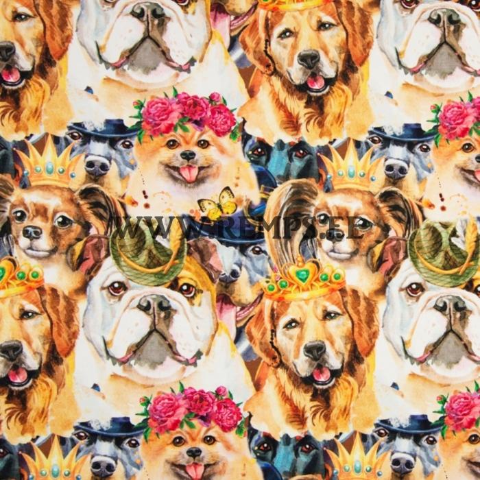 TR kuninglikud koerad.jpg