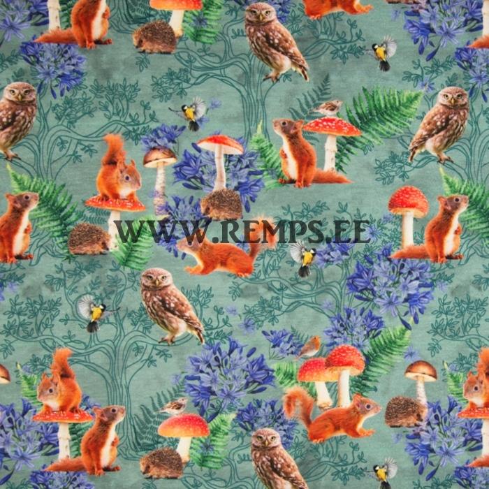 TR-oravad-seened.jpg