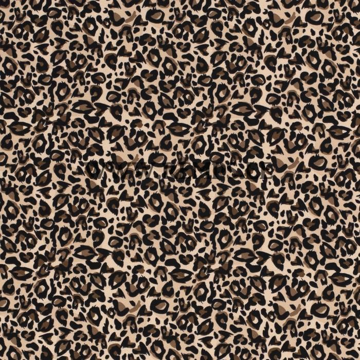 leopardi-beez.jpg