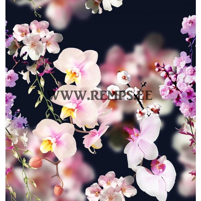 orhideed.jpg