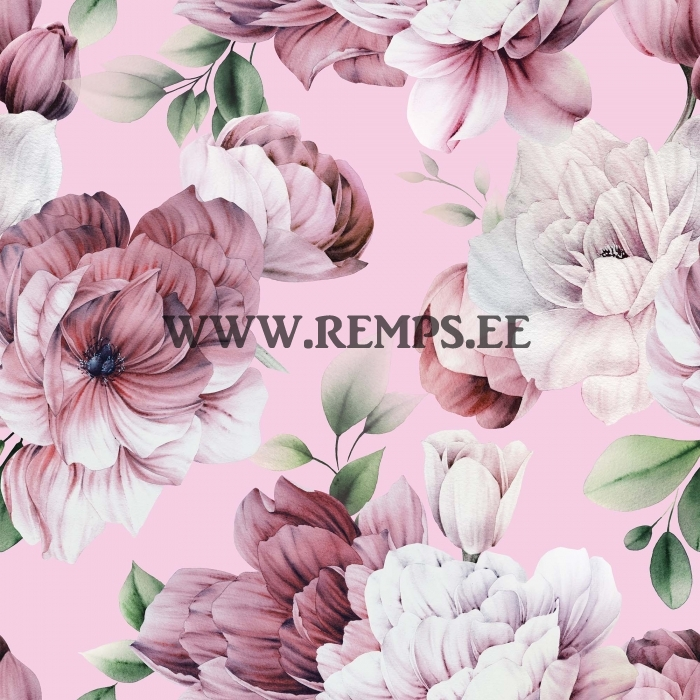 pojengid-roosa.jpg