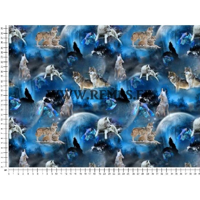 tr-hundid sinine.jpg
