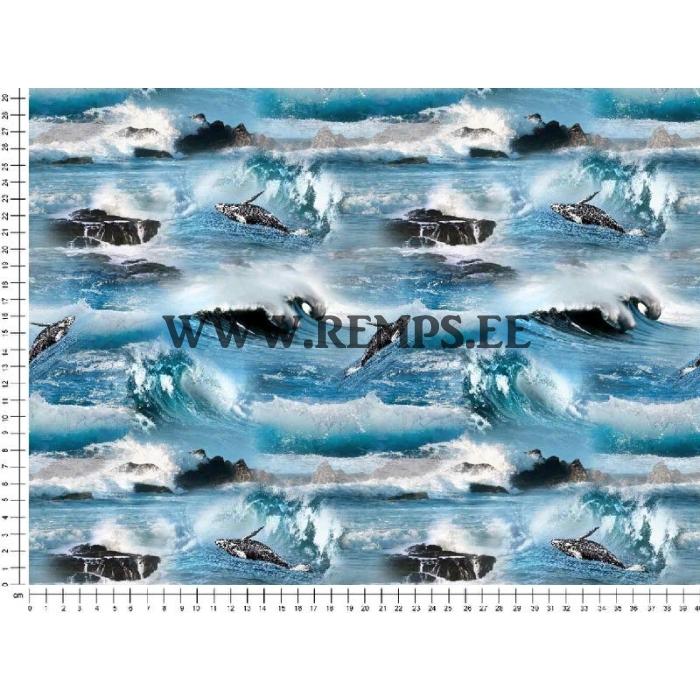 tr-merelained ja vaalad.jpg