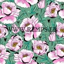 Dressiriie lilled