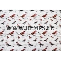 Trikooriie linnud