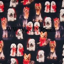 Trikooriie jõulukoerad