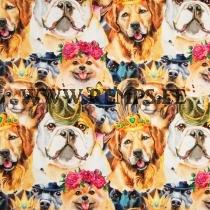 Trikooriie koerad