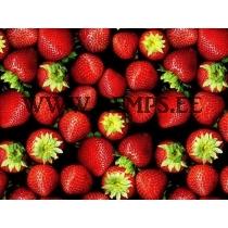 Trikooriie maasikad