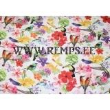 Linane lilled ja linnud