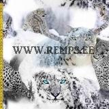 tr-lumeleopardid-snowleopards.jpg