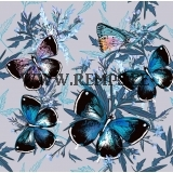 French terry butterflies